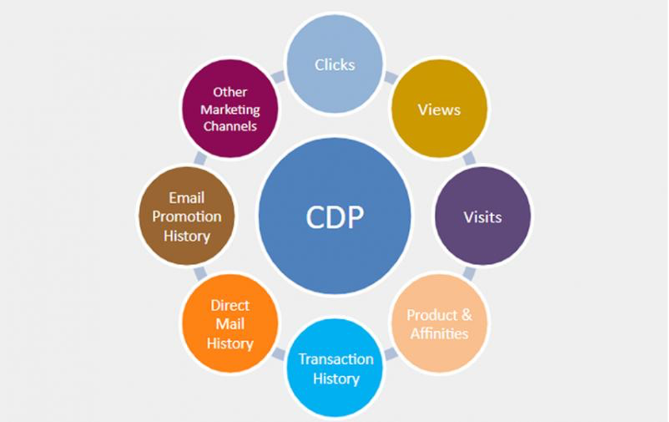 what CDP does